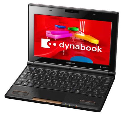 Toshiba Dynabook N300